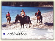 Corfu activities horse riding